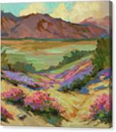 Desert Verbena At Borrego Springs Canvas Print