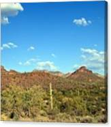 Desert View 340 Canvas Print