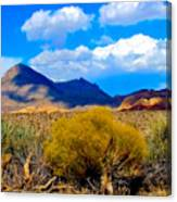 Desert View Canvas Print