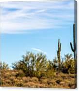 Desert View Canvas Print