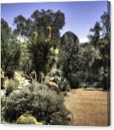 Desert Walkway Canvas Print