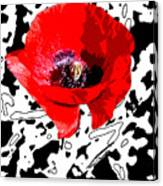 Design Poppy Canvas Print