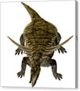 Desmatosuchus On White Canvas Print