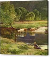 Detail Of A Highland Loch Scene Canvas Print