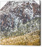 Detail On A Australian Snow Covered Mountain Canvas Print