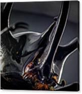 Devil Horns Macro Canvas Print