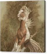 Devon The Gypsy Horse Canvas Print