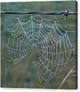 Dew On The Web Canvas Print