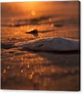 Dewees Island Sunrise Canvas Print