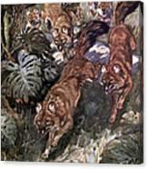Dhole, Endangered Species Canvas Print