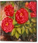 Diane's Roses Canvas Print