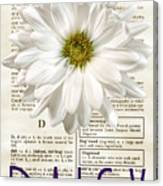 Dictionary Daisy Canvas Print