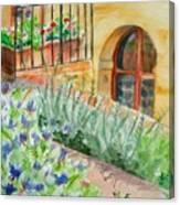 Dievole Vineyard Canvas Print
