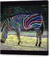 Differt Stripes For Different Types Canvas Print