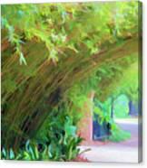 Digital Bamboo Rip Van Winkle Gardens  Canvas Print
