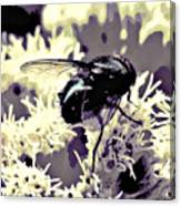 Digital Bottle Fly Canvas Print