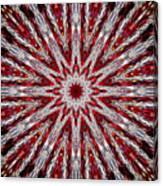 Digital Kaleidoscope Red-white 7 Canvas Print