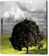 Digital Photography - The Prisoner Canvas Print