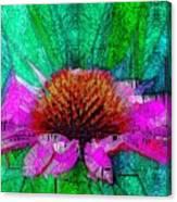 Digital Pink Echinacea  Canvas Print