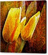 Digital Tulips Canvas Print