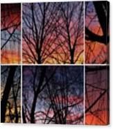 Digital Winter Trees Canvas Print