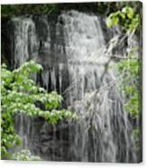 Dill Falls Canvas Print