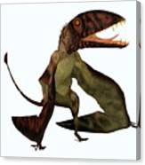 Dimorphodon Pterosaur Canvas Print