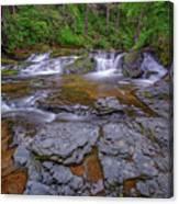 Dingmans Creek II Canvas Print