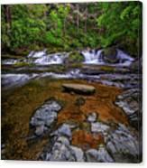 Dingmans Creek Canvas Print