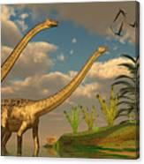 Diplodocus Dinosaur Romance Canvas Print