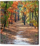 Autumn Scene Dirt Road Canvas Print