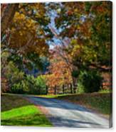 Dirt Road Through Vermont Fall Foliage Canvas Print