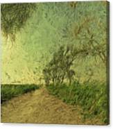 Dirt Road To The Fields Canvas Print