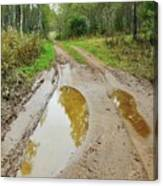 Dirty Autumn Road With Brown Pools After Rain Canvas Print