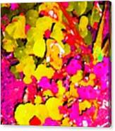 Discovering Joy Canvas Print