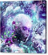Discovering The Cosmic Consciousness Canvas Print