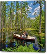 Discovery In A Cypress Swamp Canvas Print