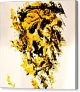 Disfhoria Canvas Print
