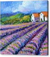 Distant  Houses And Lavender Fields Canvas Print