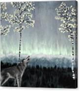 Distant Lights Canvas Print