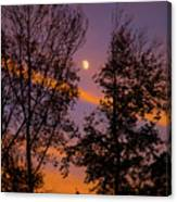 Distant Moon Canvas Print