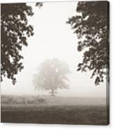 Distant Silence Canvas Print