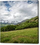 Distant Snow-capped Mountains Canvas Print