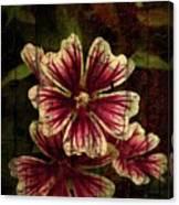 Distinctive Blossoms Canvas Print