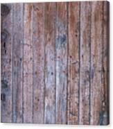 Distressed Door Canvas Print