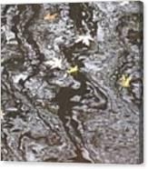 Disturbance Canvas Print