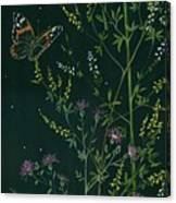 Ditchweed Fairy Hello Butterfly Canvas Print