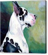 Diva The Great Dane Canvas Print