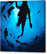 Diver And Reef Fish Canvas Print