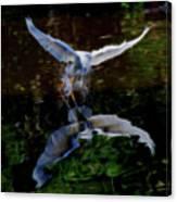 Divine Longing Canvas Print
